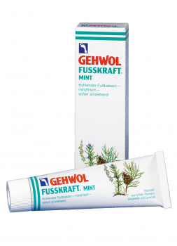 GEHWOL FUSSKRAFT Mint 12x125 ml